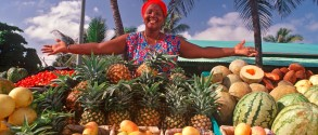 top-things-to-do-in-dominican-republic-how-to-create-a-financial-budget-tourism-34